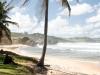 Wellensurfen auf Barbados / silver sands